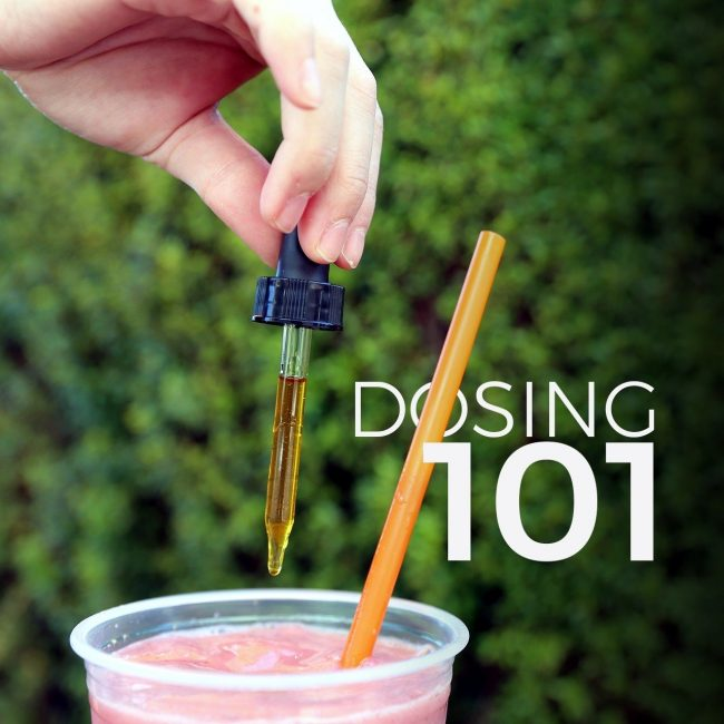 Dosing 101 – CBD Hemp Oil Microdosing Guide