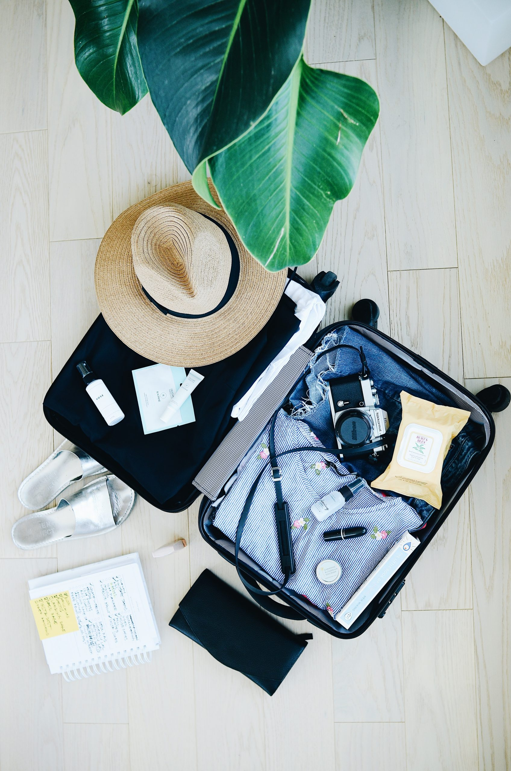 Traveling Light: Traveling with CBD